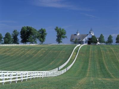 Manchester Horse Farm, Lexington, Kentucky, USA by Adam Jones
