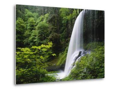 Middle North Falls, Silver Falls State Park, Oregon, USA