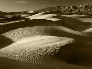Mojave Desert Sand Dunes, Death Valley National Park, California, USA by Adam Jones