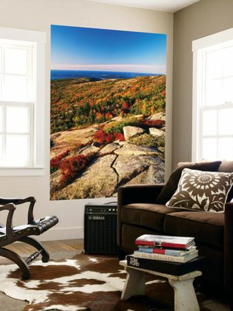 Mt Desert Island, Autumn View, Acadia National Park, Maine, USA