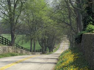 Old Iron Works Road, Lexington, Kentucky, USA by Adam Jones