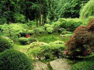 Pond Garden, Japanese Garden Portland USA by Adam Jones