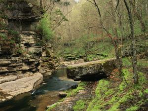 Raven Run Nature Sanctuary, Lexington, Kentucky, USA by Adam Jones