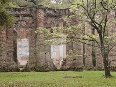 Red Brick Ruins of the Church of Prince Williams Parish known as Sheldon