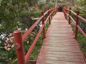 Red Bridge Over Pond in Magnolia Plantation, Charleston, South Carolina, USA by Adam Jones