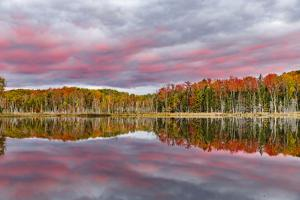 Red Jack Lake and Sunrise Reflection, Alger County, Upper Peninsula of Michigan by Adam Jones