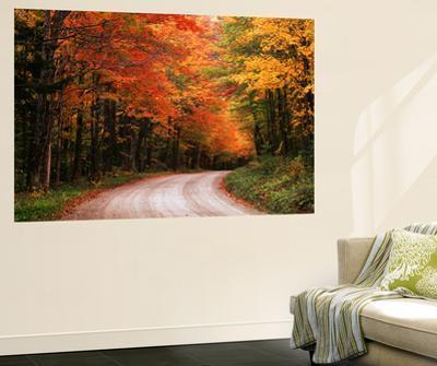 Road Through Autumn Trees, Green Mountain National Forest, Vermont, USA