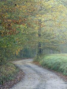 Road through Cataloochee Valley, Great Smokey Mountians National Park, North Carolina, USA by Adam Jones