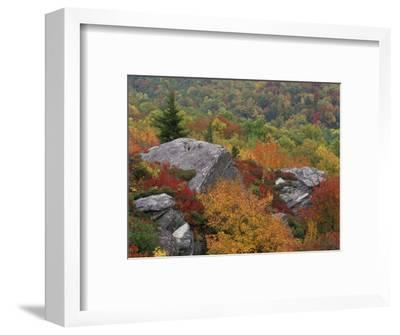 Rocky Outcrop and Autumn Colors, Blue Ridge Parkway, North Carolina, USA