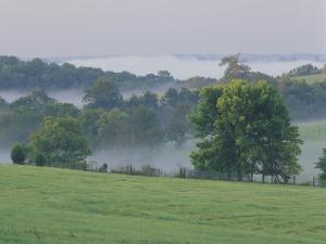 Rolling Hills of the Bluegrass Region at Sunrise, Kentucky, USA by Adam Jones