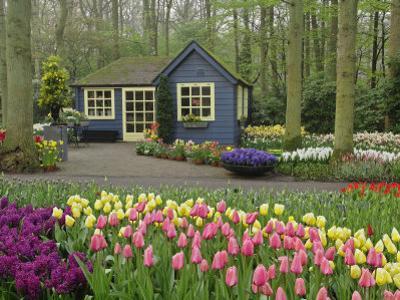 Small cottage flower shop, Keukenhof Gardens, Lisse, Netherlands by Adam Jones