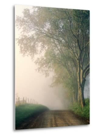 Sparks Lane, Cades Cove, Great Smoky Mountains National Park, Tennessee, USA