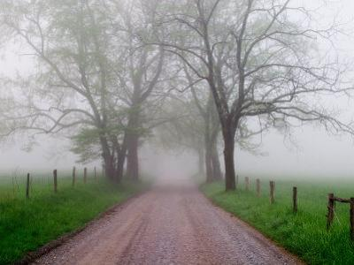 Sparks Lane on Foggy Morning, Cades Cove, Great Smoky Mountains National Park, Tennessee, USA by Adam Jones