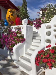 Stairs and Flowers, Chora, Mykonos, Greece by Adam Jones