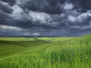 Storm Clouds over Agricultural Wheat Field, Tuscany, Italy by Adam Jones