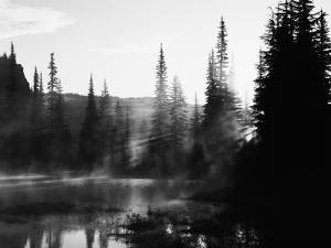 Sunbeam and Trees Reflecting in Lake, Mount Rainier National Park, Washington, USA by Adam Jones