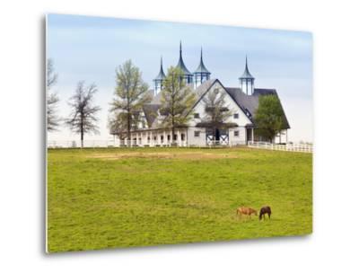 Thoroughbred Horses Grazing, Manchester Horse Farm, Lexington, Kentucky, Usa