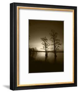 Trees Reflected in Water, Reelfoot National Wildlife Refuge, Tennessee, USA by Adam Jones