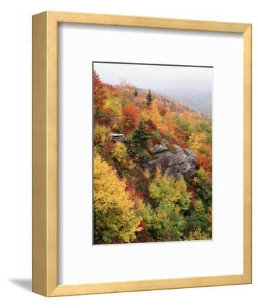 View of Autumnal Rocks, Blue Ridge Parkway, North Carolina, USA