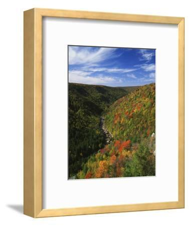 View of Blackwater Canyon in Autumn, Blackwater Falls State Park, West Virginia, USA
