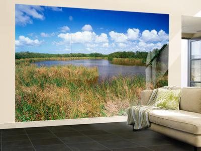 View of Eco Pond, Everglades National Park, Florida, USA