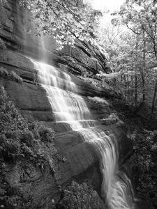 View of Waterfall, Jessamine County, Kentucky, USA by Adam Jones