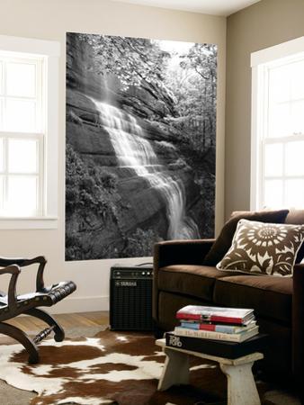 View of Waterfall, Jessamine County, Kentucky, USA