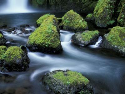 Water Below Wahclella Falls, Columbia River Gorge National Scenic Area, Oregon, USA