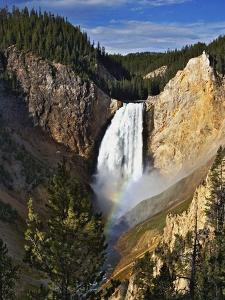 Waterfall in Yellowstone National Park by Adam Jones