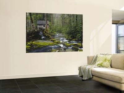Watermill By Stream in Forest, Roaring Fork, Great Smoky Mountains National Park, Tennessee, USA