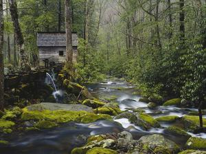 Watermill in Forest by Stream, Roaring Fork, Great Smoky Mountains National Park, Tennessee, USA by Adam Jones