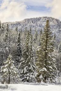 Winter mountain scene, Montana by Adam Jones