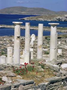 Archaeological Site, Delos, Unesco World Heritage Site, Greece by Adam Woolfitt