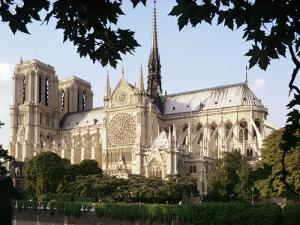 Cathedral of Notre Dame, Paris, France by Adam Woolfitt