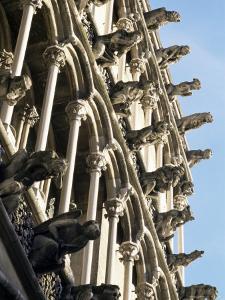 Facade with False Gargoyles, Eglise Notre-Dame, Dijon, Burgundy, France by Adam Woolfitt