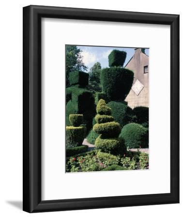 Topiary, Levens Hall, Cumbria, England, United Kingdom