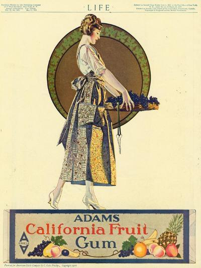 Adams California Fruit Gum, Chewing Gum Sweets Coles Phillips, USA, 1920--Giclee Print
