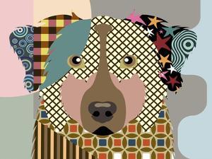 Australian Shepherd Dog by Adefioye Lanre
