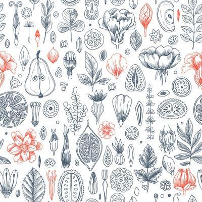 Floral Elements Background. Linear Graphic. Engraved Botanical Seamless Pattern. Vector Illustratio