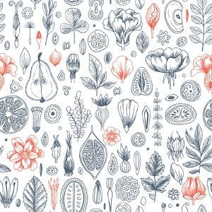 Floral Elements Background. Linear Graphic. Engraved Botanical Seamless Pattern. Vector Illustratio by adehoidar
