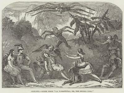 Adelphi, Scene from La Tarantula; Or, the Spider King--Giclee Print