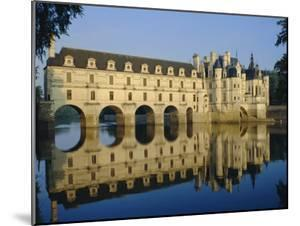Chateau Chenonceau, Loire Valley, Centre, France, Europe by Adina Tovy