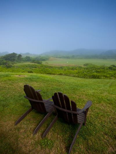 Adirondack Chairs on Lawn at Martha's Vineyard with Fog over Trees in the Distant View-James Shive-Photographic Print