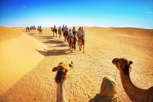 People in the Sahara Desert by Adisa