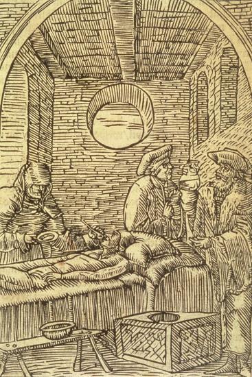 Administering Medicinal Herbs, 1534--Giclee Print