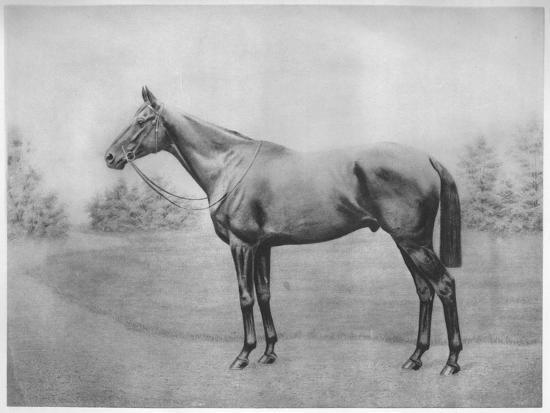 'Admiral Togo III', 1911-Unknown-Giclee Print