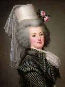 Marie-Antoinette (1755-93) of Habsbourg-Lorraine, Archduchess of Austria, Queen of France by Adolf Ulrich Wertmuller