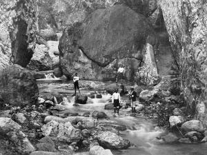 Cane River, Jamaica, C1905 by Adolphe & Son Duperly
