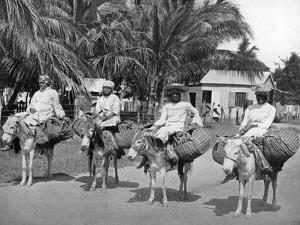 On the Way Home from Market, Jamaica, C1905 by Adolphe & Son Duperly