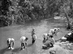 Women Washing Clothes in the River, Port Antonio, Jamaica, C1905 by Adolphe & Son Duperly